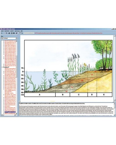Biotopes und Ecosystems, Interactive CD-ROM