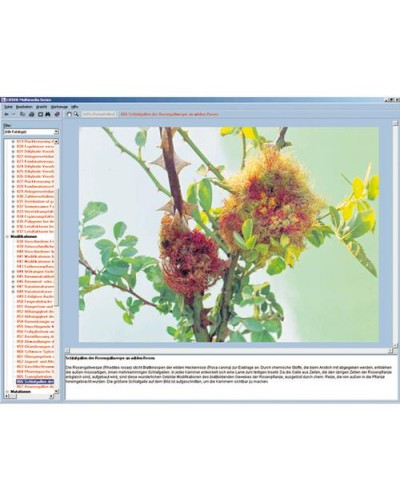 Crop Pests and Controls, Interactive CD-ROM